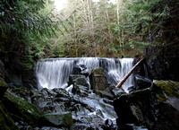 Whitman Creek Waterfall
